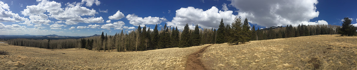 Humphreys Peak, AZ